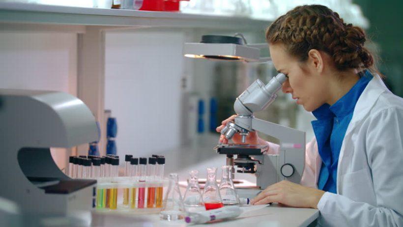 Trabajos superiores para los comandantes de licenciatura en biología